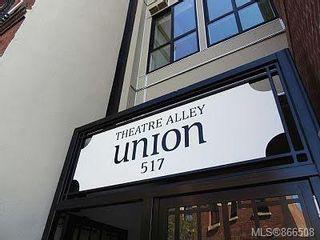 Photo 14: 317 517 Fisgard St in : Vi Downtown Condo for sale (Victoria)  : MLS®# 866508