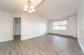 Photo 8: 401 12838 65 Street in Edmonton: Zone 02 Condo for sale : MLS®# E4253949