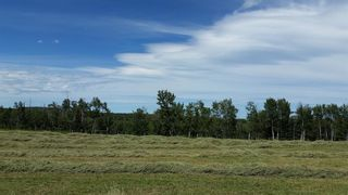 Photo 27: ON Highway 27: Rural Mountain View County Land for sale : MLS®# A1012349