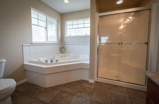 Photo 20: 23702 BOULDER PLACE in Maple Ridge: Silver Valley House for sale : MLS®# R2579917