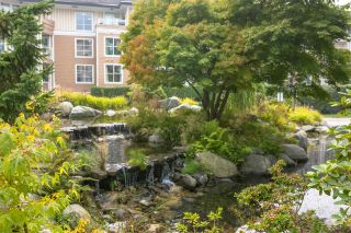 """Photo 21: 316 3629 DEERCREST Drive in North Vancouver: Roche Point Condo for sale in """"DEERFIELD BY THE SEA"""" : MLS®# R2499037"""