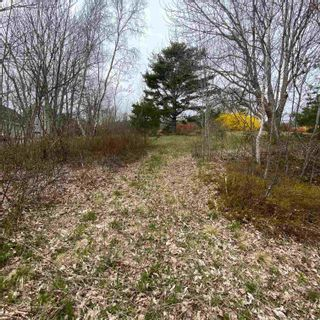 Photo 8: Vacant Land Highway 331 in West Lahave: 405-Lunenburg County Vacant Land for sale (South Shore)  : MLS®# 202111160