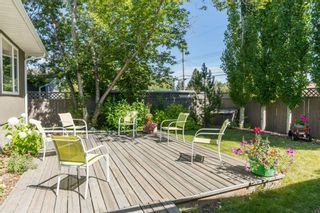 Photo 24: 16 WALNUT Drive SW in Calgary: Wildwood Detached for sale : MLS®# A1022816