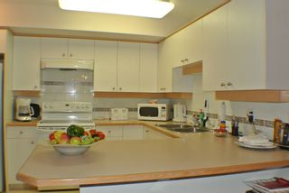Photo 9: 130 1200 Cameron Avenue in Kelowna: Kelowna South House for sale : MLS®# 10110502