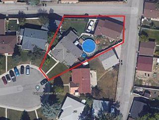 Photo 10: 118 Pinetree Bay NE in Calgary: Pineridge Detached for sale : MLS®# A1132573