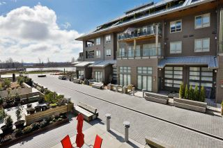 Photo 14: 155 6168 LONDON ROAD in Richmond: Steveston South Condo for sale : MLS®# R2249073