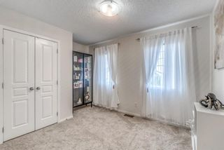 Photo 23: 262 Copperstone Circle SE in Calgary: Copperfield Detached for sale : MLS®# A1136994