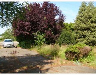 Photo 3: 10760 PALMBERG Road in Richmond: East Richmond House for sale : MLS®# V773838