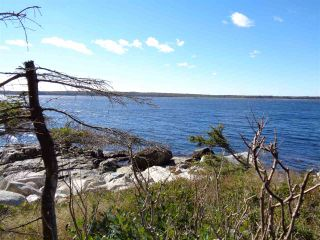 Photo 13: Lot SANDY POINT Road in Sandy Point: 407-Shelburne County Vacant Land for sale (South Shore)  : MLS®# 201509498