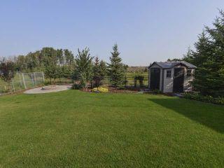 Photo 24: 1188 ADAMSON Drive in Edmonton: Zone 55 House for sale : MLS®# E4226534