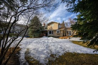 Photo 46: 2941 Lindstrom Drive SW in Calgary: Lakeview Detached for sale : MLS®# A1082838