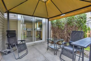 """Photo 32: 22 6513 200 Street in Langley: Willoughby Heights Townhouse for sale in """"Logan Creek"""" : MLS®# R2567089"""