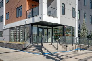 Photo 27: 116 2702 17 Avenue SW in Calgary: Shaganappi Apartment for sale : MLS®# A1100913