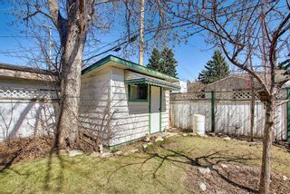 Photo 44: 116 Bowers Street NE: Airdrie Detached for sale : MLS®# A1095413