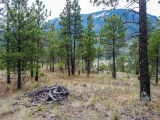 Photo 7: 1215 HIGHWAY 12: Lillooet Lots/Acreage for sale (South West)  : MLS®# 160618