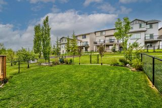 Photo 41: 240 PANORA Close NW in Calgary: Panorama Hills Detached for sale : MLS®# A1114711