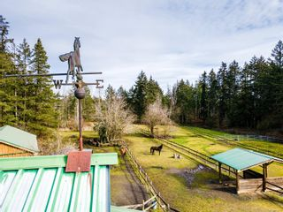 Photo 31: 2040 Saddle Dr in : PQ Nanoose House for sale (Parksville/Qualicum)  : MLS®# 870748