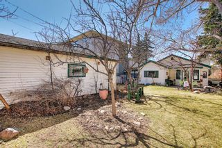 Photo 47: 116 Bowers Street NE: Airdrie Detached for sale : MLS®# A1095413