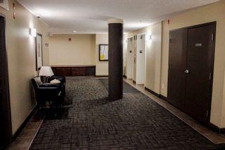 Photo 4: 2-102 4245 139 Avenue in Edmonton: Zone 35 Condo for sale : MLS®# E4250077