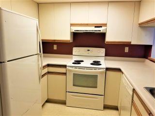 Photo 8: 377 1440 GARDEN Place in Delta: Cliff Drive Condo for sale (Tsawwassen)  : MLS®# R2558580