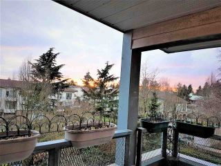 Photo 20: 211 7465 SANDBORNE Avenue in Burnaby: South Slope Condo for sale (Burnaby South)  : MLS®# R2145691