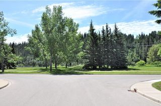 Photo 43: 110 35 Street NW in Calgary: Parkdale House for sale : MLS®# C4123515
