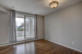 Photo 10: 144 1717 60 Street SE in Calgary: Red Carpet Apartment for sale : MLS®# A1131300