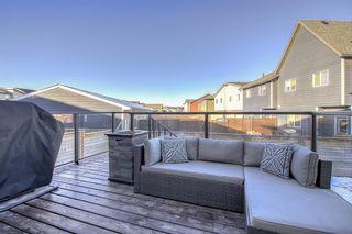 Photo 32: 27 Walden Mount SE in Calgary: Walden Detached for sale : MLS®# A1061206