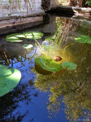 Photo 19: 103 Park Dr in SALT SPRING ISLAND: GI Salt Spring House for sale (Gulf Islands)  : MLS®# 782737