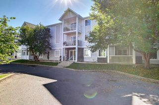 Photo 24: 108 2108 Valleyview Park SE in Calgary: Dover Apartment for sale : MLS®# A1145848