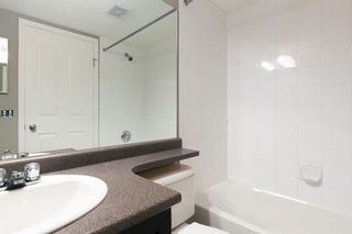 Photo 19: 8329 304 MACKENZIE Way SW: Airdrie Apartment for sale : MLS®# A1128736