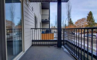 Photo 32: 204 2715 12 Avenue SE in Calgary: Albert Park/Radisson Heights Apartment for sale : MLS®# A1060528