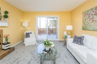 Photo 26: 1177 KNOTTWOOD Road in Edmonton: Zone 29 Townhouse for sale : MLS®# E4224118