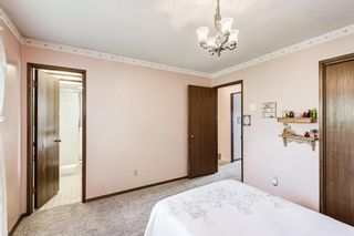 Photo 28: 5836 Silver Ridge Drive NW in Calgary: Silver Springs Detached for sale : MLS®# A1121810