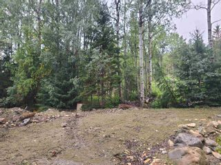 Photo 16: 4453 MOUNTAIN VIEW Road in McBride: McBride - Town Land for sale (Robson Valley (Zone 81))  : MLS®# R2616224
