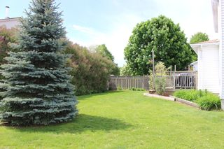 Photo 29: 906 Chipping Park in Cobourg: House for sale : MLS®# X5250442