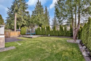 Photo 36: 11478 93 Avenue in Delta: Annieville House for sale (N. Delta)  : MLS®# R2563310