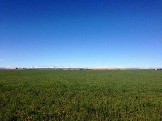 Photo 5: 48: Rural Foothills County Land for sale : MLS®# C4235807