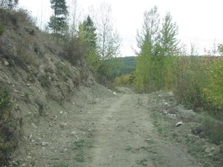 Photo 17: 80 Acres Creighton Valley Road, in Lumby: Vacant Land for sale : MLS®# 10239894