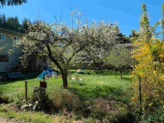 Photo 12: 5738 SPINDRIFT Street in Sechelt: Sechelt District House for sale (Sunshine Coast)  : MLS®# R2579916
