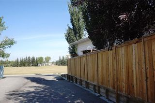Photo 34: 79 ERIN Crescent SE in Calgary: Erin Woods Detached for sale : MLS®# C4204669