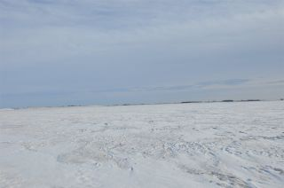 Photo 3: RR 261 Twp Rd 570: Rural Sturgeon County Rural Land/Vacant Lot for sale : MLS®# E4230595