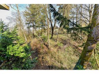 Photo 18: 11508 MCBRIDE Drive in Surrey: Bolivar Heights House for sale (North Surrey)  : MLS®# R2096390