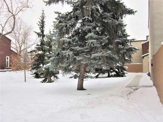 Photo 36: 7118 178 Street in Edmonton: Zone 20 Townhouse for sale : MLS®# E4222101