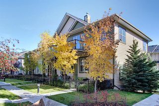Photo 19: 231 Mckenzie Towne Square SE in Calgary: McKenzie Towne Row/Townhouse for sale : MLS®# A1069933