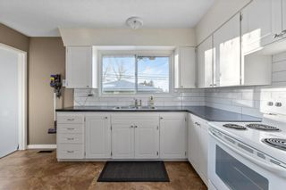 Photo 8: 2339 Maunsell Drive NE in Calgary: Mayland Heights Detached for sale : MLS®# A1059146