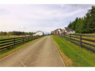 Photo 20: 30041 HARRIS Road in Abbotsford: Bradner House for sale : MLS®# F1447614