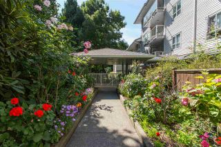"""Photo 7: 102 5577 SMITH Avenue in Burnaby: Central Park BS Condo for sale in """"Cottonwood Grove"""" (Burnaby South)  : MLS®# R2481228"""