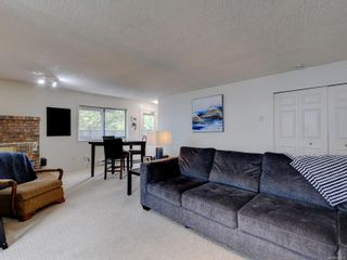 Photo 25: 3908 Lianne Pl in : SW Strawberry Vale House for sale (Saanich West)  : MLS®# 875878