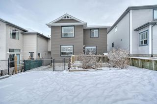 Photo 46: 262 Panamount Close NW in Calgary: Panorama Hills Detached for sale : MLS®# A1050562